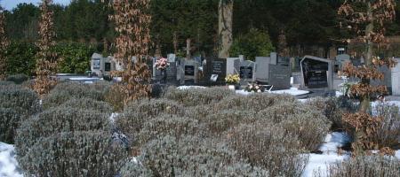 begraafplaats onder de sneeuw