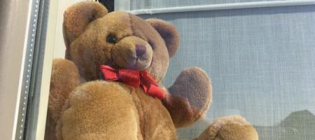 knuffelbeer zichtbaar achter de raam