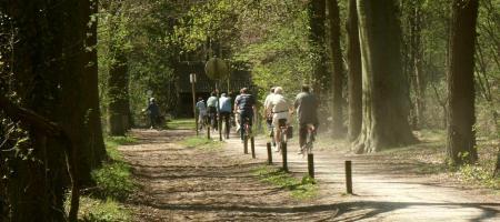 groep mensen fietst door het bos