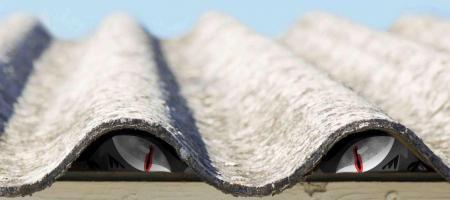 asbestbeest houdt schuil onder een golfplatendak