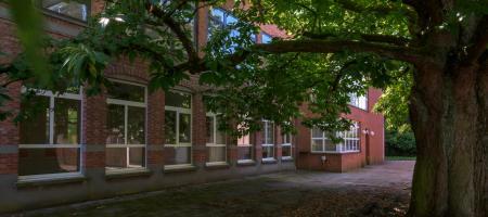 de oude schoolgebouwen staan in de schaduw van de monumentale kastanjeboom