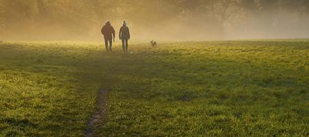 koppel wandelt in mistige wei met losse hond