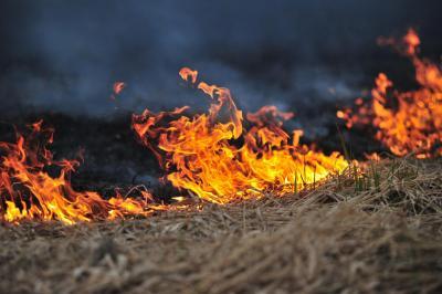 brandend gras