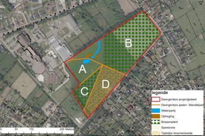 ontwerpplan dwergenbos
