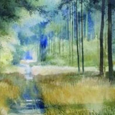 aquarelle van Xavier Swolfs met een bosweggetje
