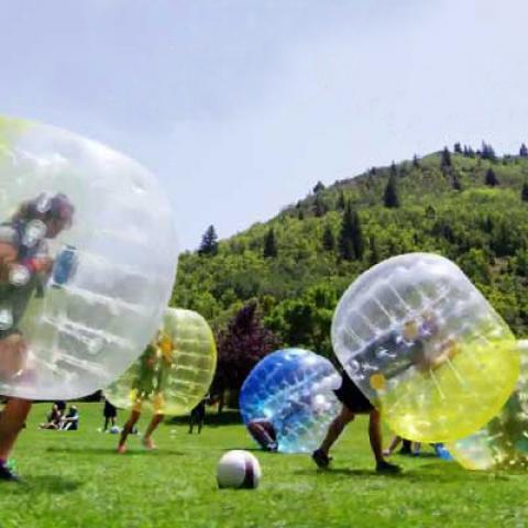 Kinderen in bumperball op grasveld
